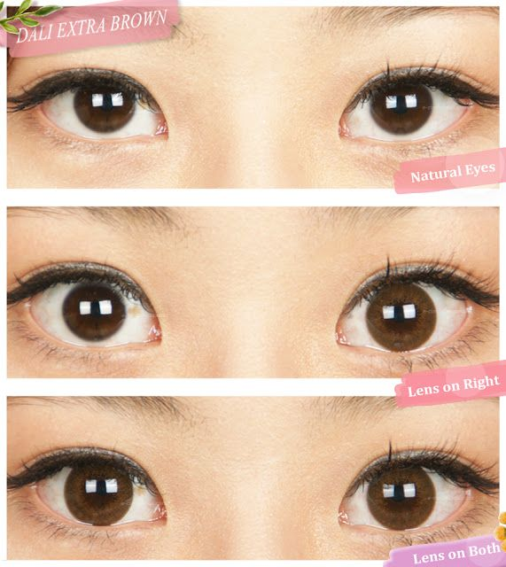brown circle lens review
